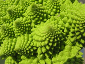 If you're curious, it's called Romanesco.