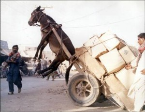 Load testing has plenty of practical applications as well.